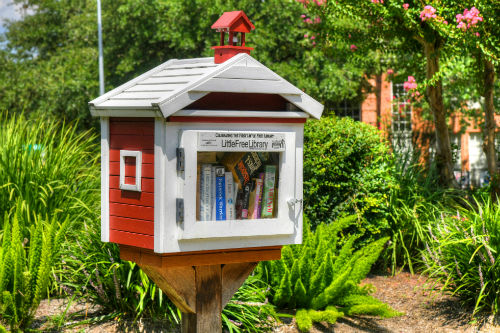 Spring Creek Oak Little Library